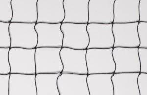 Scenic Net